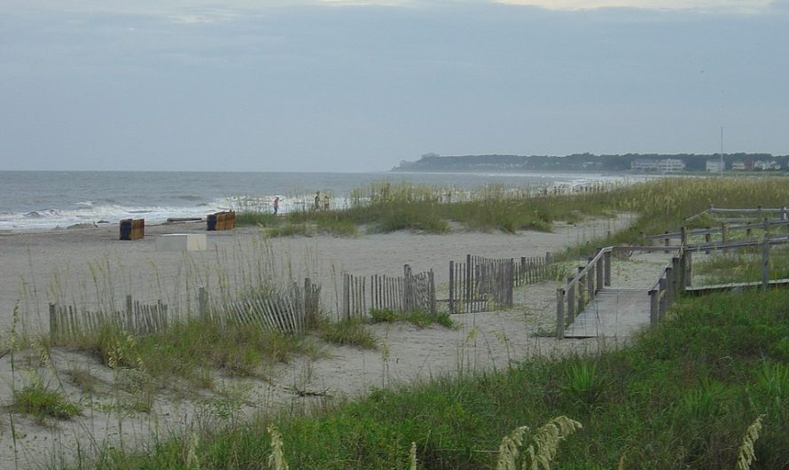 3 des meilleurs lieux à visiter aux USA lors des vacances d'été