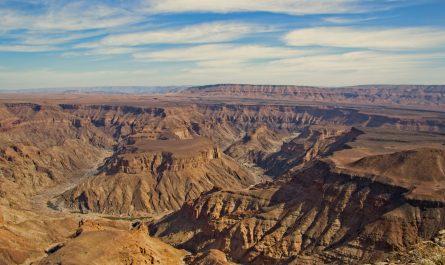 Les meilleurs endroits pour faire un safari mémorable en Namibie
